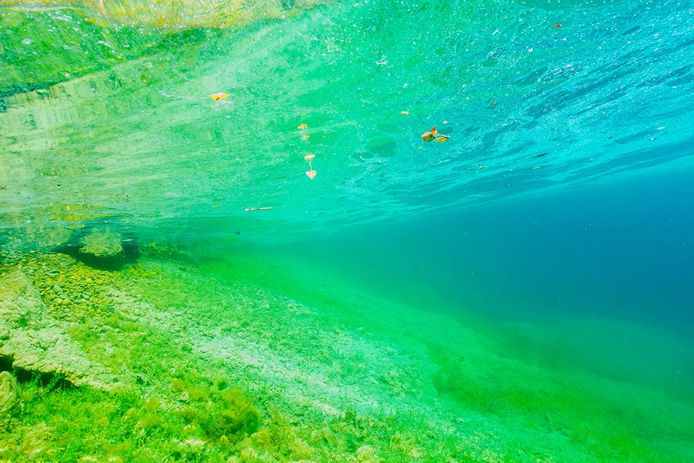 5 Stücke Anti Booms Mit Snap Drehbare Leuchtende Fishing Rig Gebogen Booms M